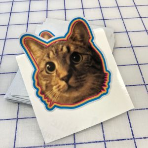 reflective-3M-cat